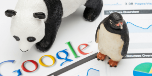 Google Penguin Guest Blog