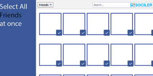 Select all your Facebook Friends at Once